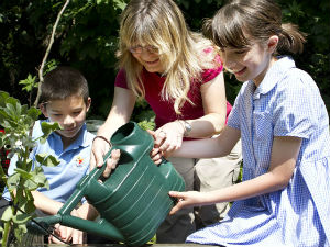 Pupils gardening